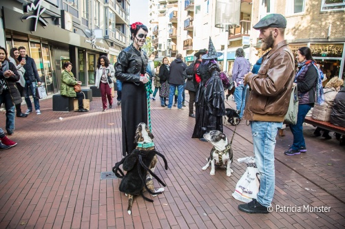 halloween-dog-parade-zoetermeer-patricia-munster-11