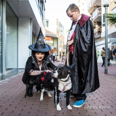 halloween-dog-parade-zoetermeer-patricia-munster-15