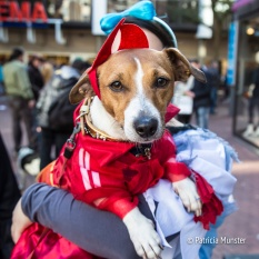 halloween-dog-parade-zoetermeer-patricia-munster-17