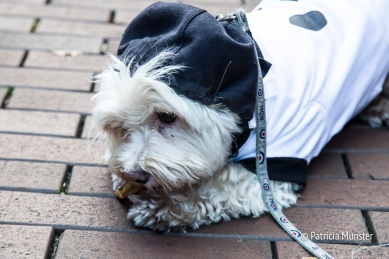 halloween-dog-parade-zoetermeer-patricia-munster-27