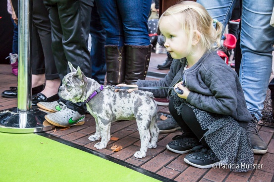 halloween-dog-parade-zoetermeer-patricia-munster-36
