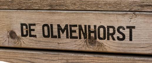 Bloemenfestival-2017-De-Olmenhorst-011