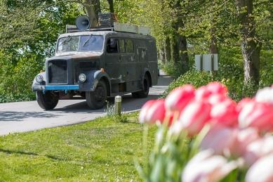 Bloemenfestival-2017-De-Olmenhorst-023