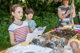 Alles leren over de edelopvang in Zoetermeer