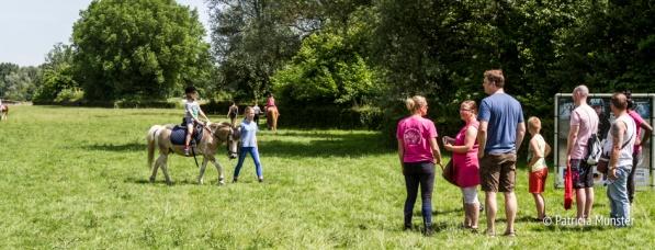 Pony rijden op Westerparkdag Zoetermeer