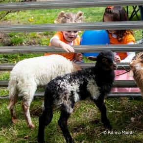 Koningsdag-2018-Zoetermeer-Foto-Patricia-Munster-013