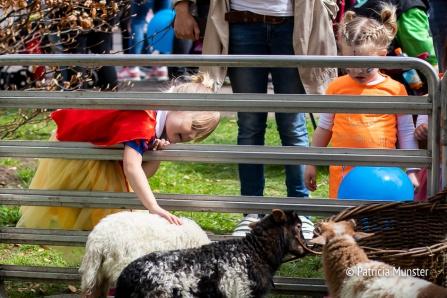 Koningsdag-2018-Zoetermeer-Foto-Patricia-Munster-014