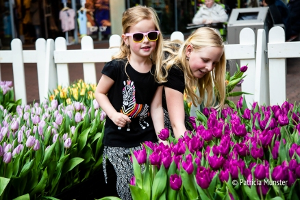 Tulpen uitzoeken in het Stadshart Zoetermeer