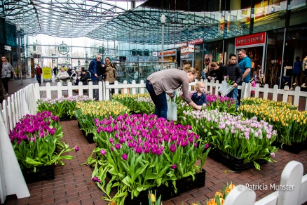 Lente event in het Stadshart