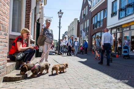 Teckel-dag-2018-Zoetermeer-Foto-Patricia_Munster-022