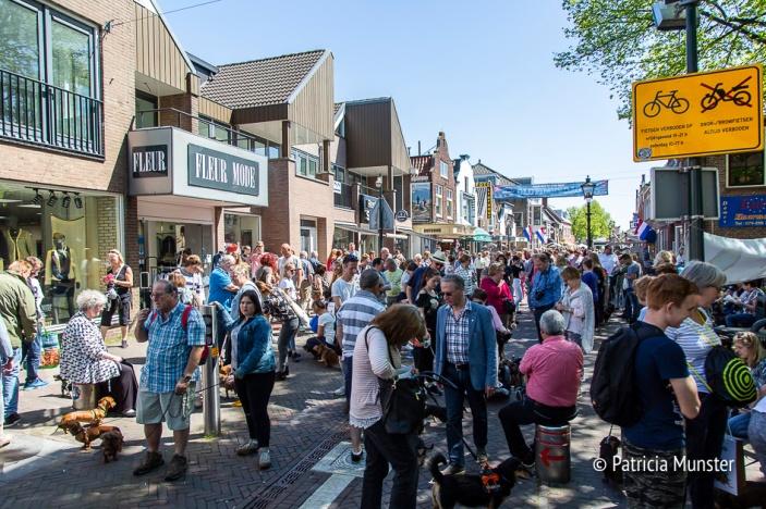 Teckel-dag-2018-Zoetermeer-Foto-Patricia_Munster-025