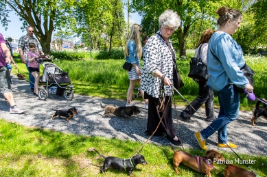 Teckel-dag-2018-Zoetermeer-Foto-Patricia_Munster-031