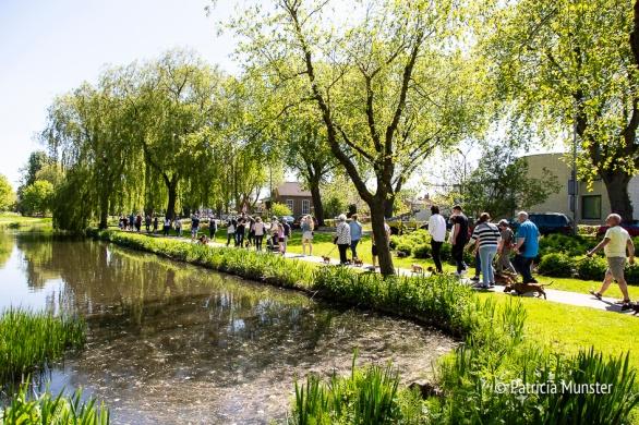 Teckel-dag-2018-Zoetermeer-Foto-Patricia_Munster-036