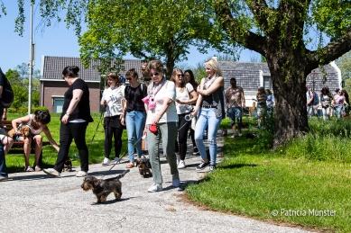 Teckel-dag-2018-Zoetermeer-Foto-Patricia_Munster-041