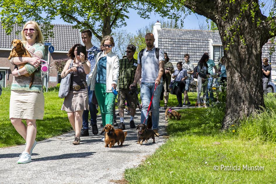 Teckel-dag-2018-Zoetermeer-Foto-Patricia_Munster-043