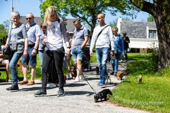 Teckel-dag-2018-Zoetermeer-Foto-Patricia_Munster-054