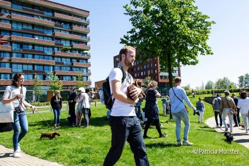Teckel-dag-2018-Zoetermeer-Foto-Patricia_Munster-059