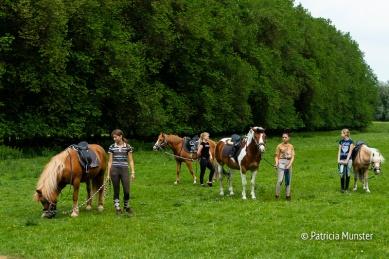 Pony rijden in het Westerpark