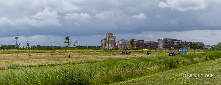 Bentwoud met in de verte de flats van Oosterheem, Zoetermeer