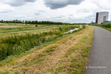 Uitzicht vanaf Oostkade Zoetermeer over Bentwoud
