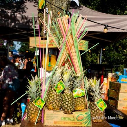 Ananas bij Rastaplas 2018