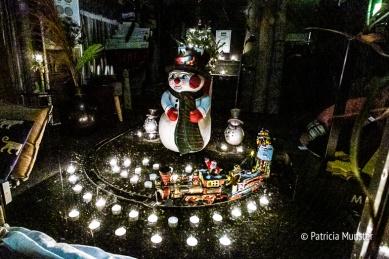 Kaarsjesavond-Dorpsstraat-Zoetermeer-Foto-Patricia-Munster-044