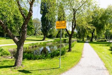 Herdenking-4mei2020-Foto-Patricia-Munster-013
