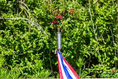 Herdenking-4mei2020-Foto-Patricia-Munster-035